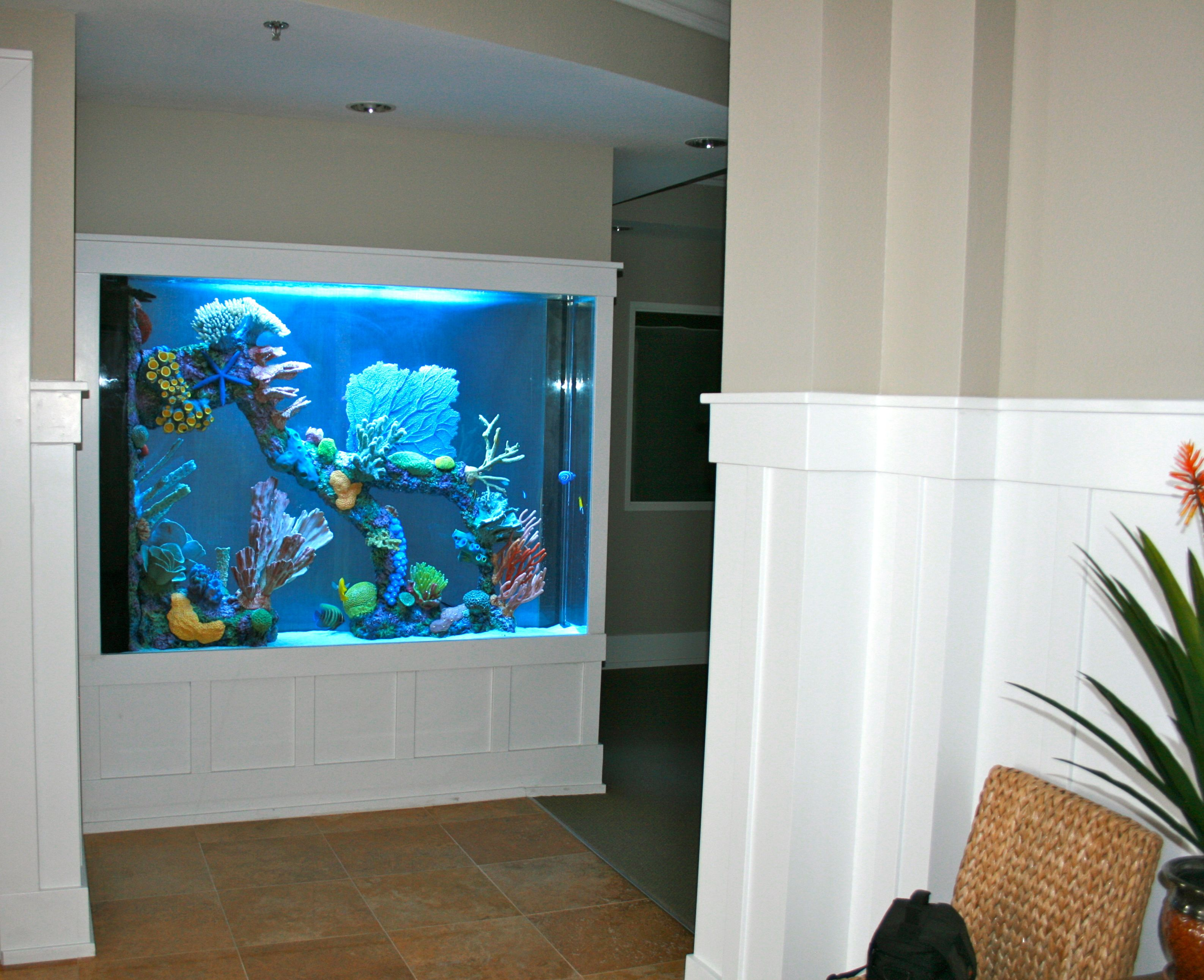 great bedrooms aquarium tank ideas photos best derby bedroom on concept aquarius fish the of pinterest lights full derbyaquarius size bathrooms