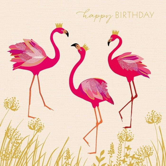 Sara Miller - Birthday flamingos