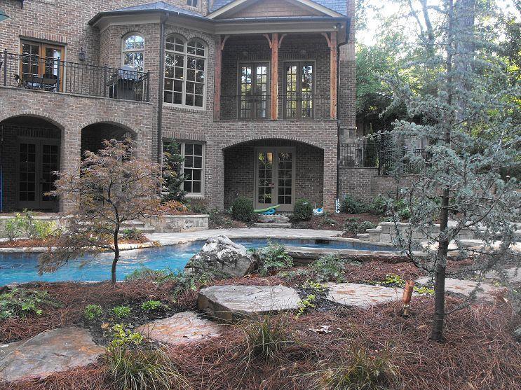 natural landscape pool