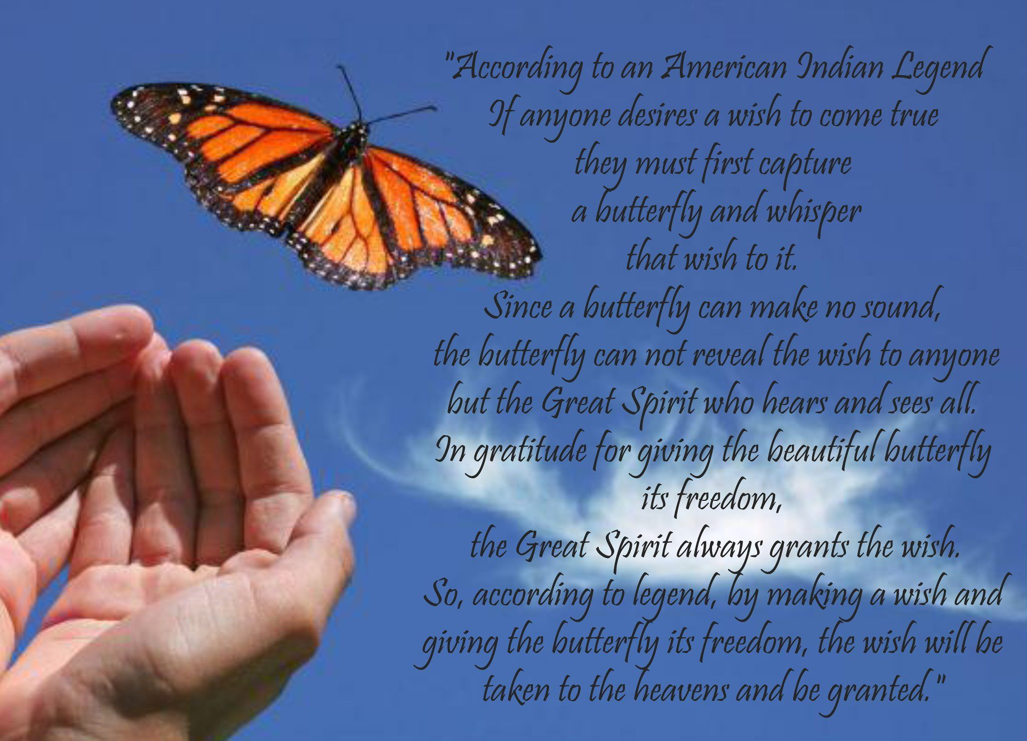 A Butterfly Inspiration Butterfly Quotes Butterfly