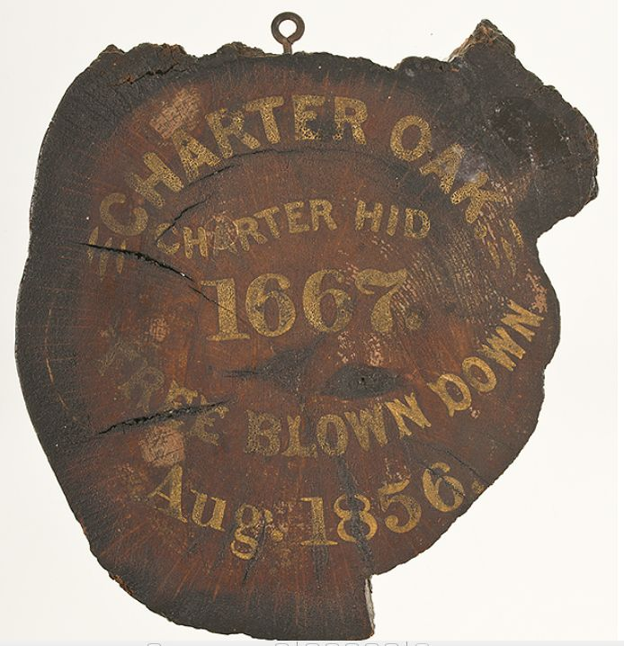"""A cut relic of the famed """"Charter Oak"""" of Connecticut. The oak was a large white oak tree growing in Hartford, Connecticut, from the 12th or 13th century, until it was blown over during a storm in 1856. According to local legend, Connecticut's Royal Charter of 1662 was hidden in the tree to prevent its confiscation by the English. The tree became a symbol for American independence, and it is commemorated on the Connecticut quarter."""