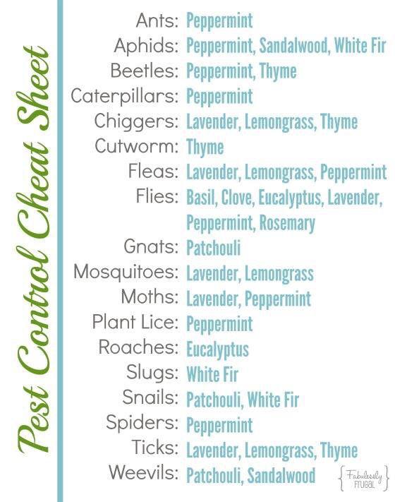 Pest Control Cheat Sheet Essential Oils Natural Spider Repellant Spiders Repellent Diy Pest Control