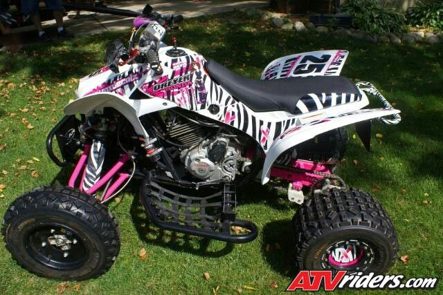 Zebra quad!!!