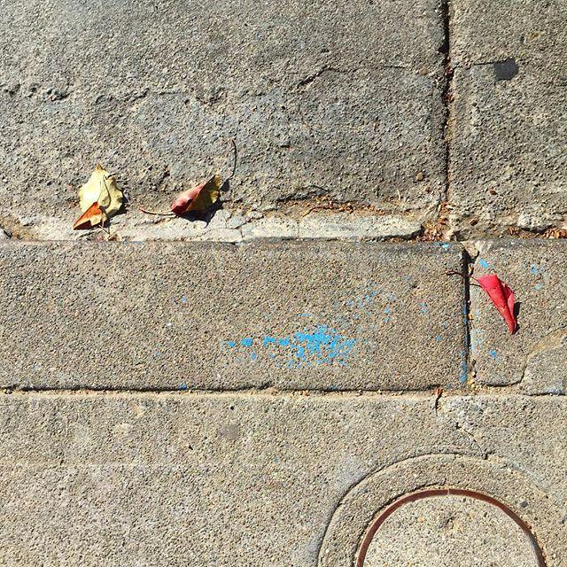 #Oakland #road #leaf #curb #gutter #concrete #cement #urban #urbanart #urbanarcheology #pavement #hardscape #streetart #modern #modernist #accidentalart #abstractart #abstract #art #sidewalkstamps #lookdown #unintentionalart #unexpectedart #learnminimalism #minimalist #minimal #uniminimal