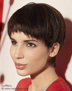 Pixie Cut For Women With A Long Neck Short Hairstyles Short