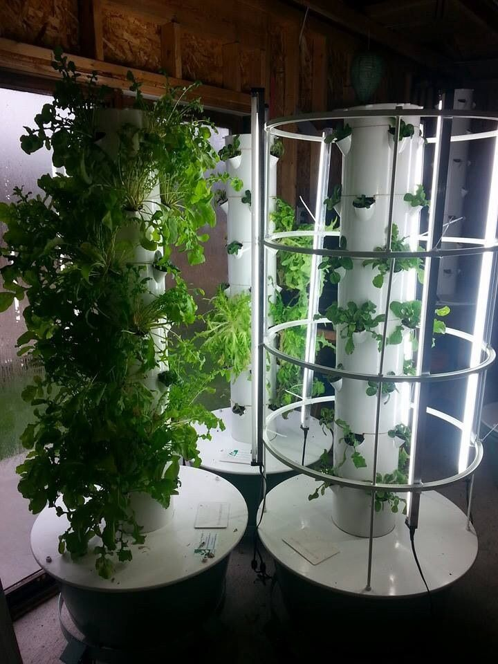 Grow good health with the Tower Garden by Juice Plus+