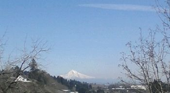 Mt Hood on a clear beautiful spring day!