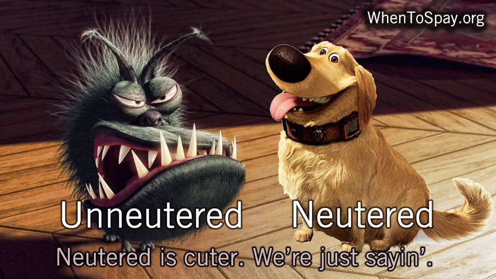 Movie Throwback Thursday: Neutered is Cuter!