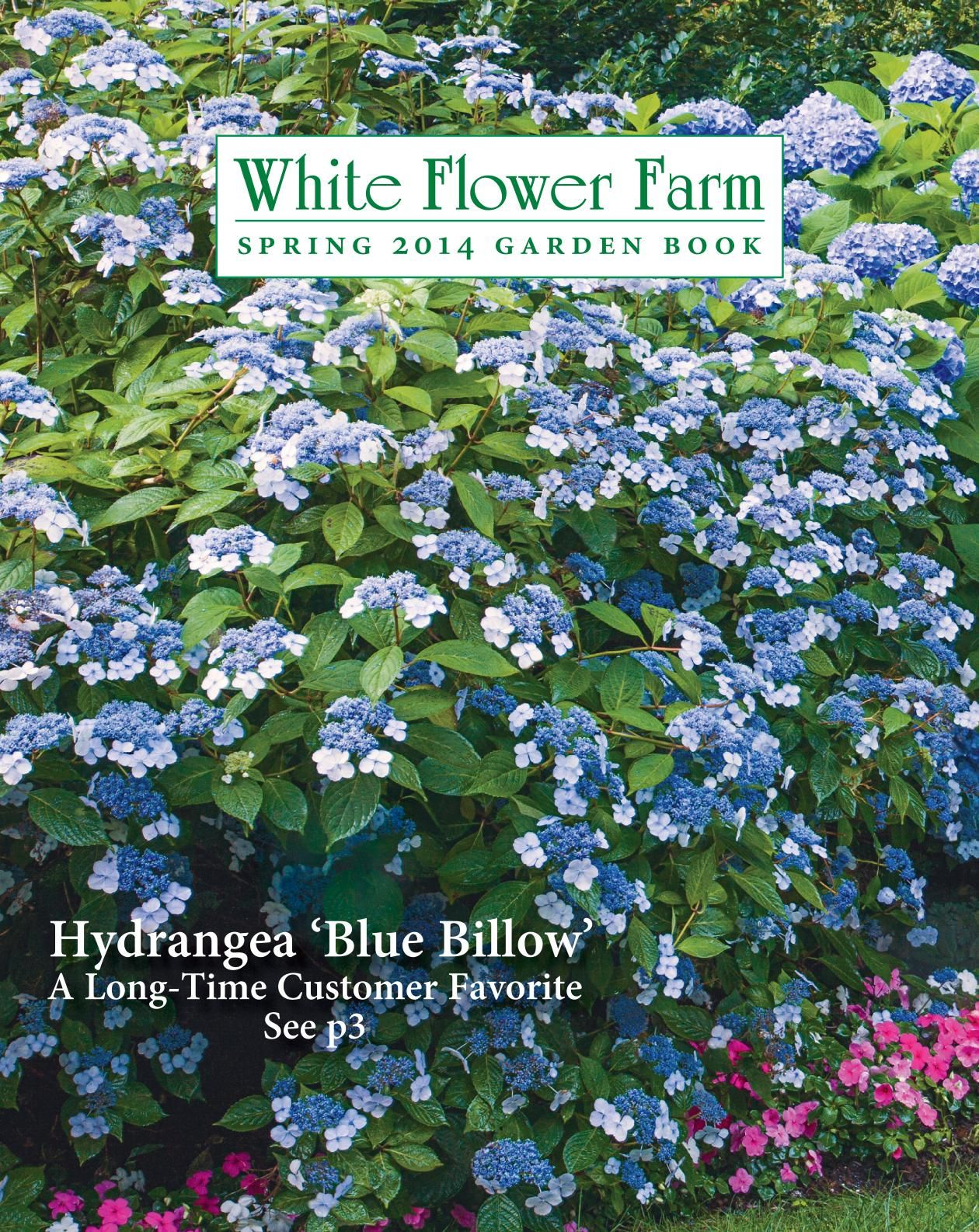 White Flower Farm Catalogs Lawn Garden Pinterest White