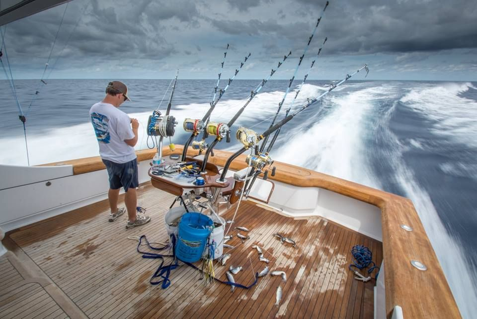 Pin by Tommy Tyner on Rods and Reels (With images) Sport
