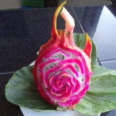 Fruit And Vegetable Carving Portfolio Ideas Thai Creations Fruit And Vegetable Carving Dragon Fruit Fruit Carving