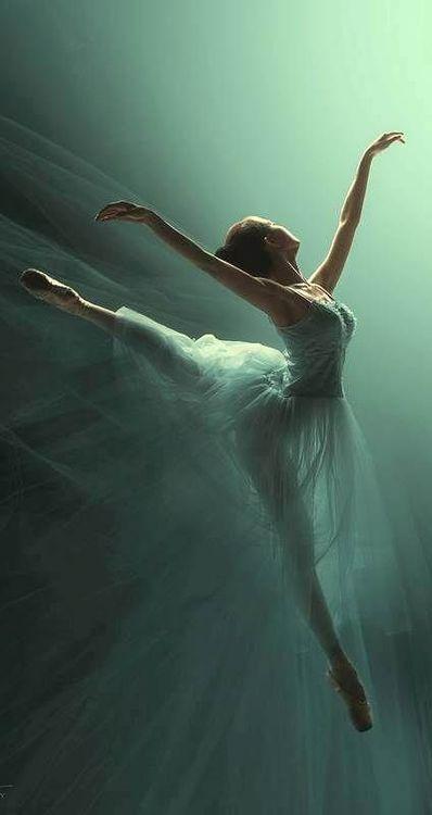 98f3cf717a37 Bellafaye Garden Danza Arte, Danza Y Baile, Bailarinas De Ballet, Dibujos  De Ballet