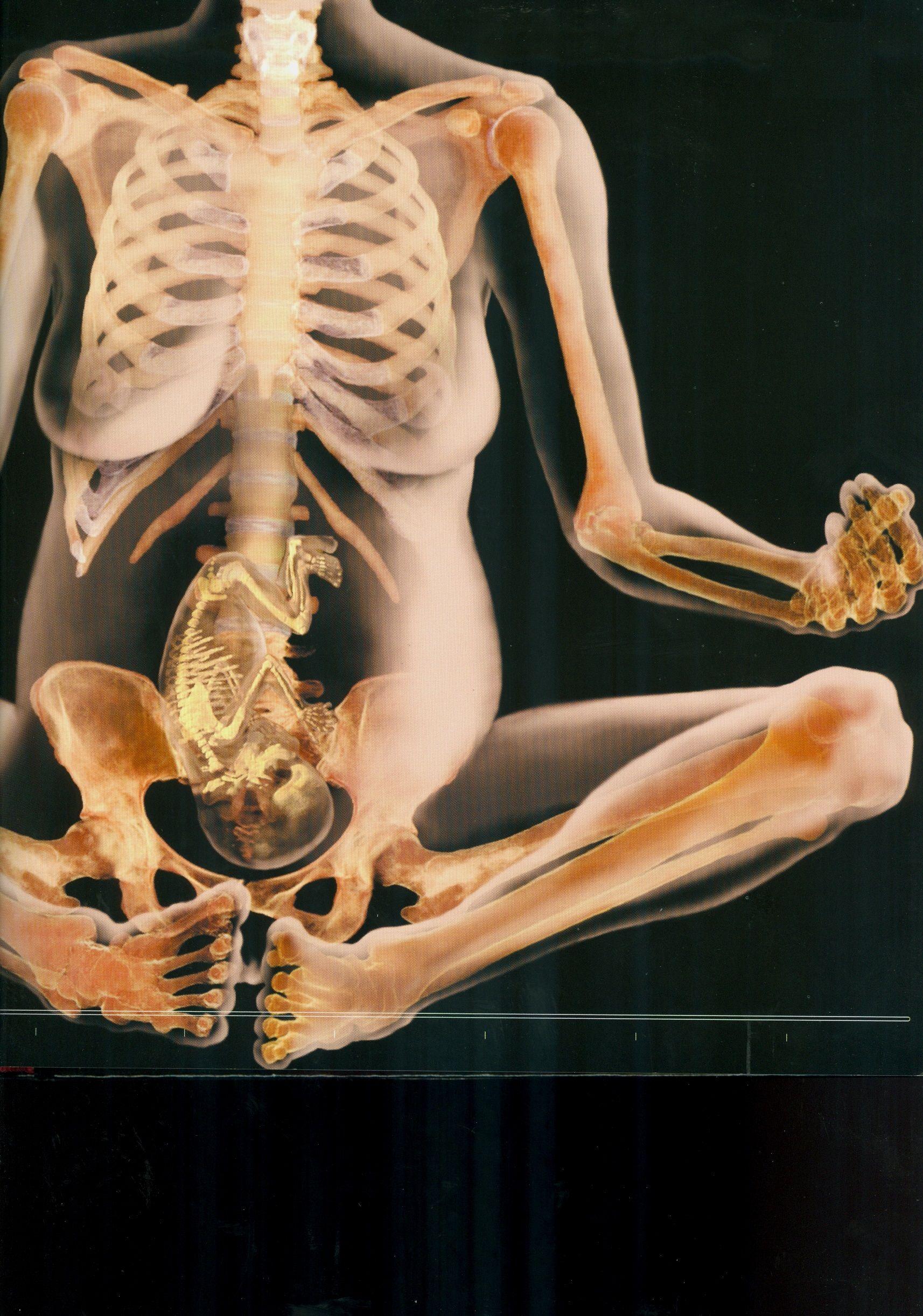Pregnancy Q & A   El cuerpo humano, Cuerpo humano y El cuerpo