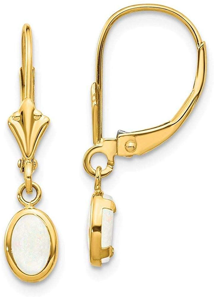 14k Yellow Gold Oval Amethyst Bezel Lever-back Earrings