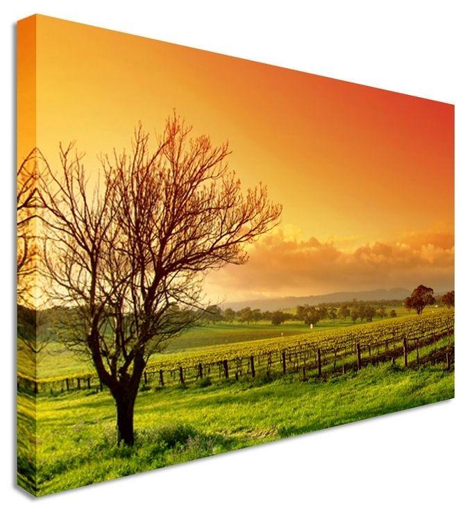 Orange Lonely Tree by Landscape Art Canvas Prints, Canvas Art Cheap ...
