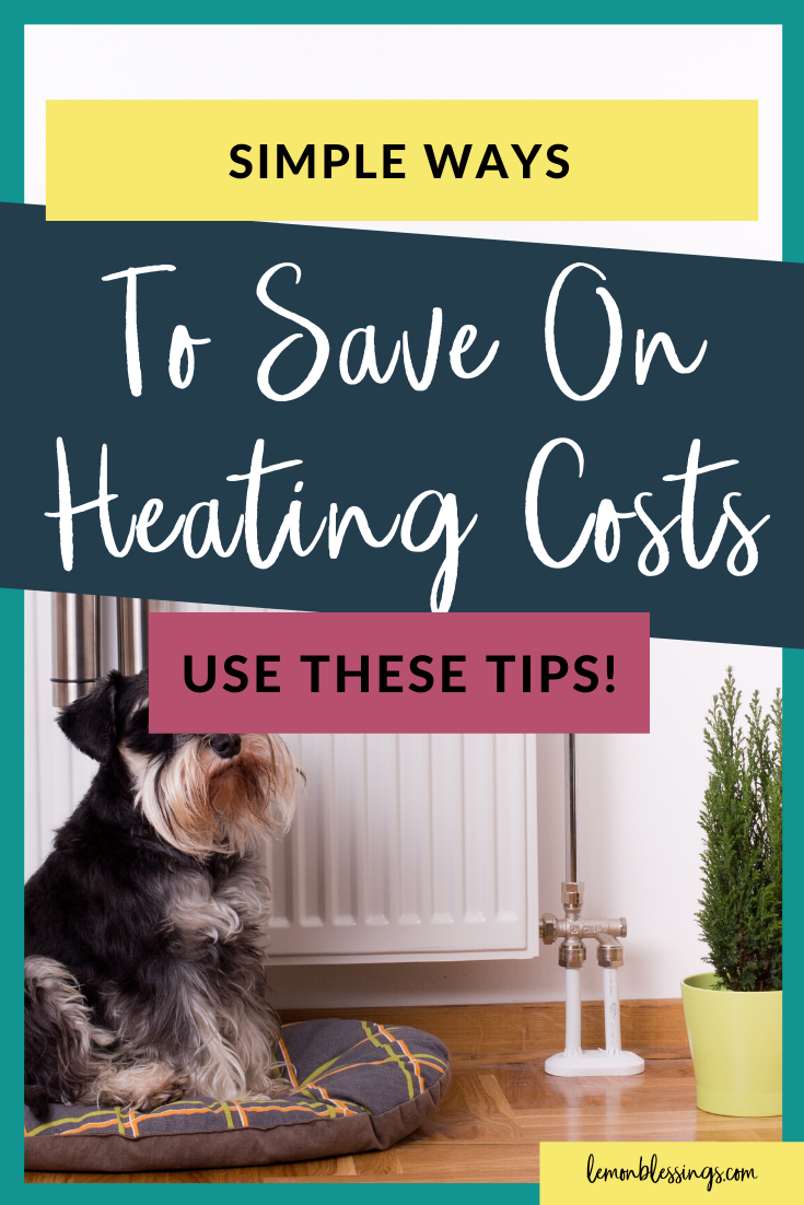Save Money on Heating Costs in 2020 Money advice, Ways