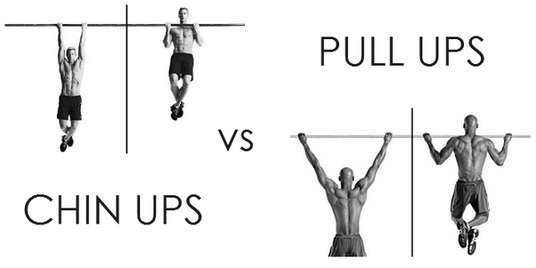 b77569af Are pull-ups or chin ups better exercise? - Quora | Fitness | Chin ...