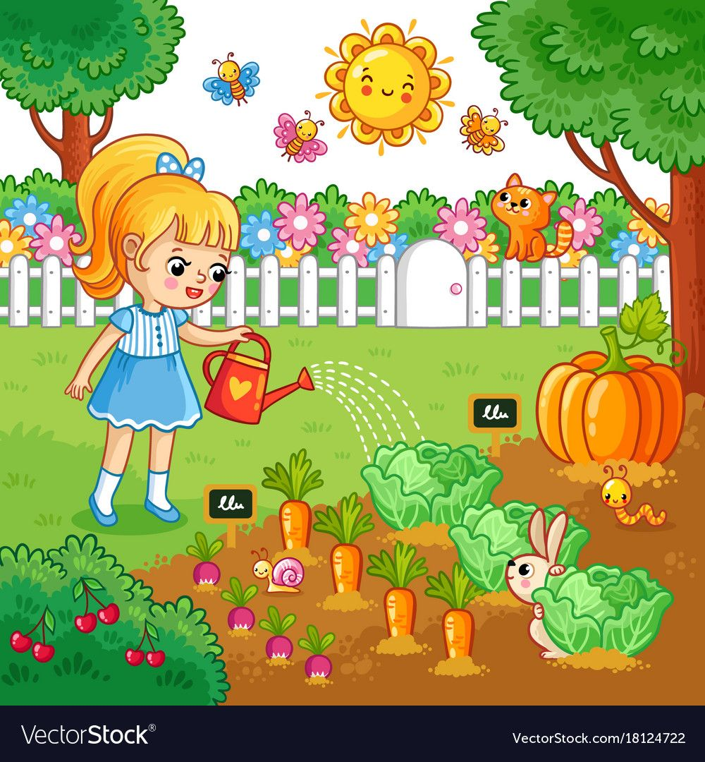Girl is watering garden bed with vegetables Vector Image