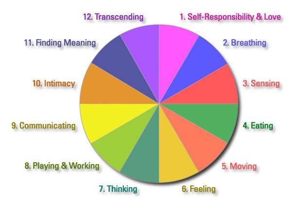 Components of Travis Wellness Wheel   Personal Wellness - a