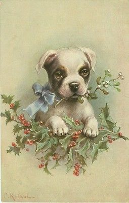 puppy playing with holly and mistletoe