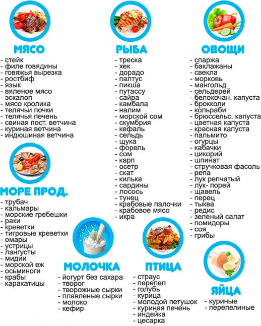 что входит в белковую диету для похудения