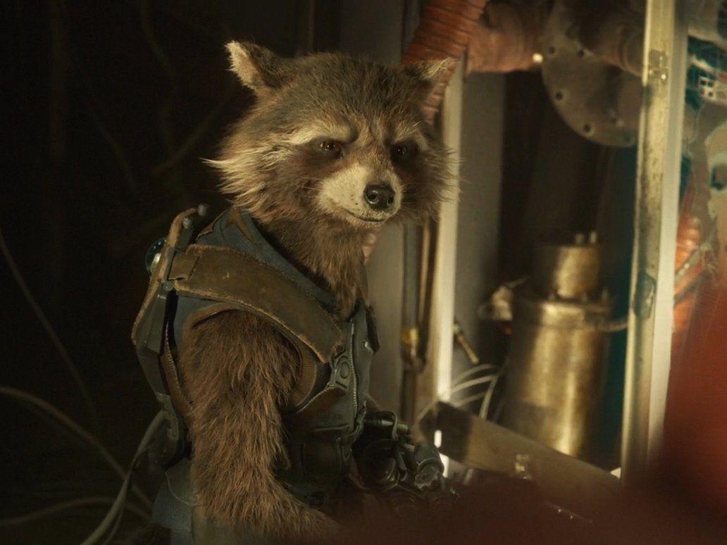 Guardians Of The Galaxy Vol 2 Rocket Raccoon 15 By Https