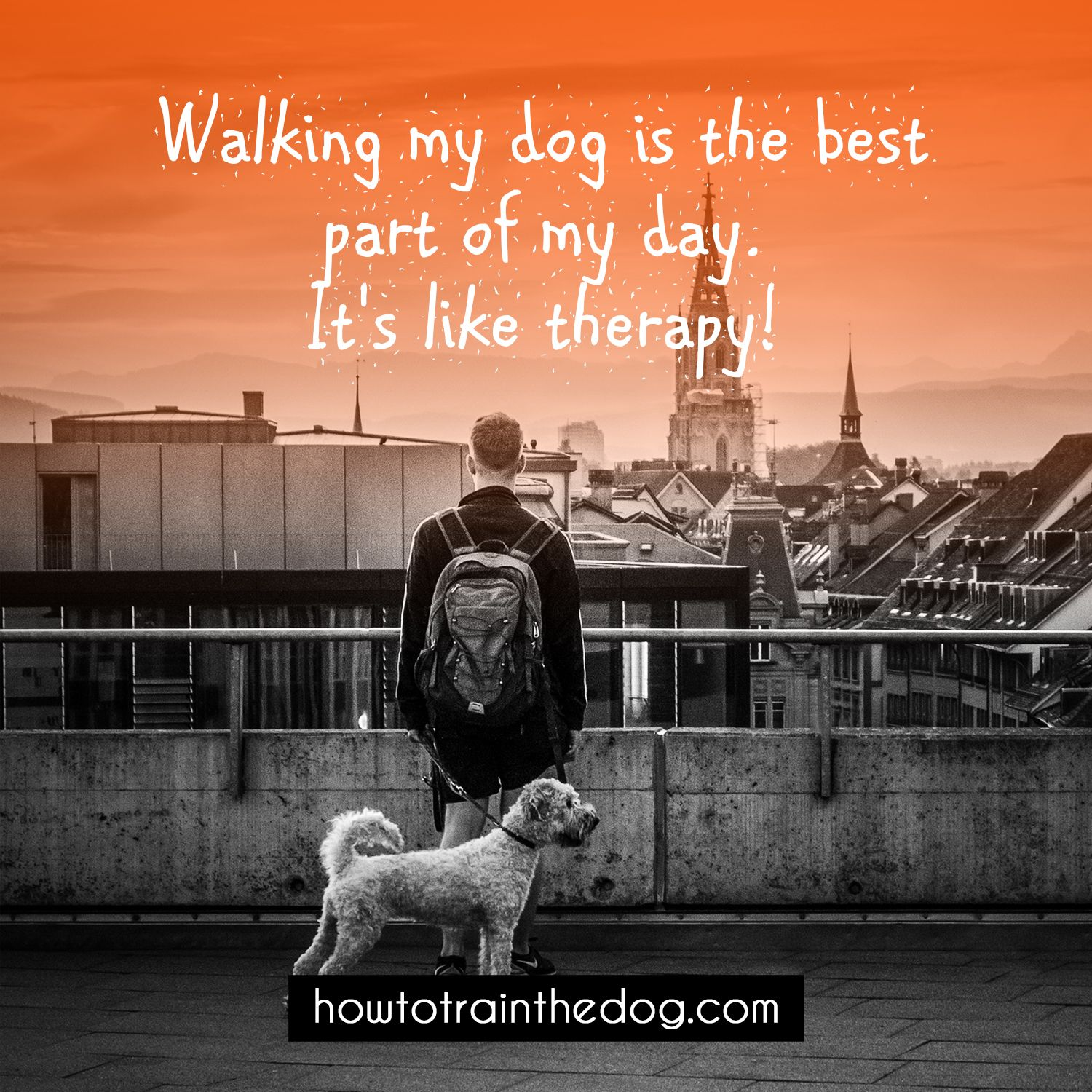 Walking My Dog Is The Best Part Of My Day It S Like Therapy