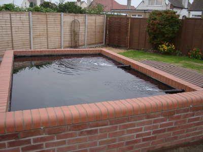 Formal koi pond koi pond with bull nosed edging brick for Brick koi pond