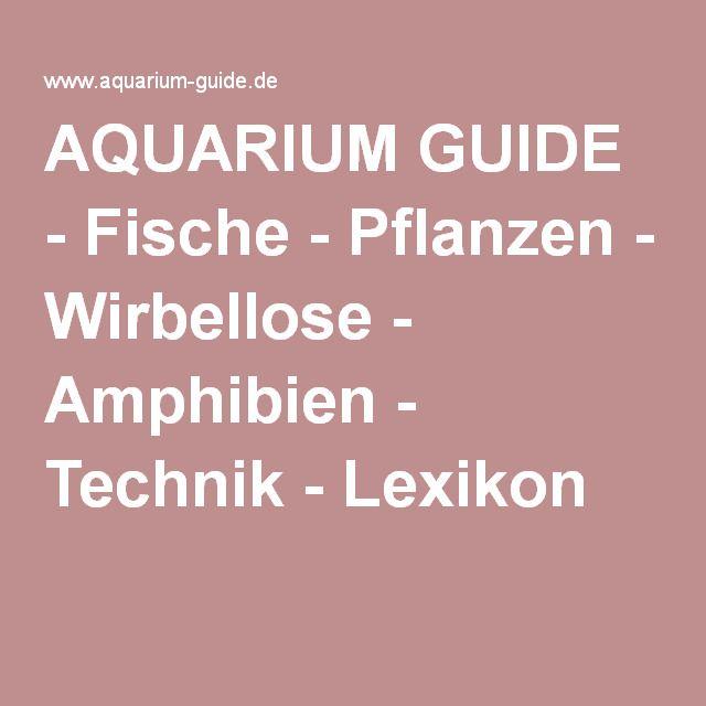 AQUARIUM GUIDE - Fische - Pflanzen - Wirbellose - Amphibien - Technik - Lexikon