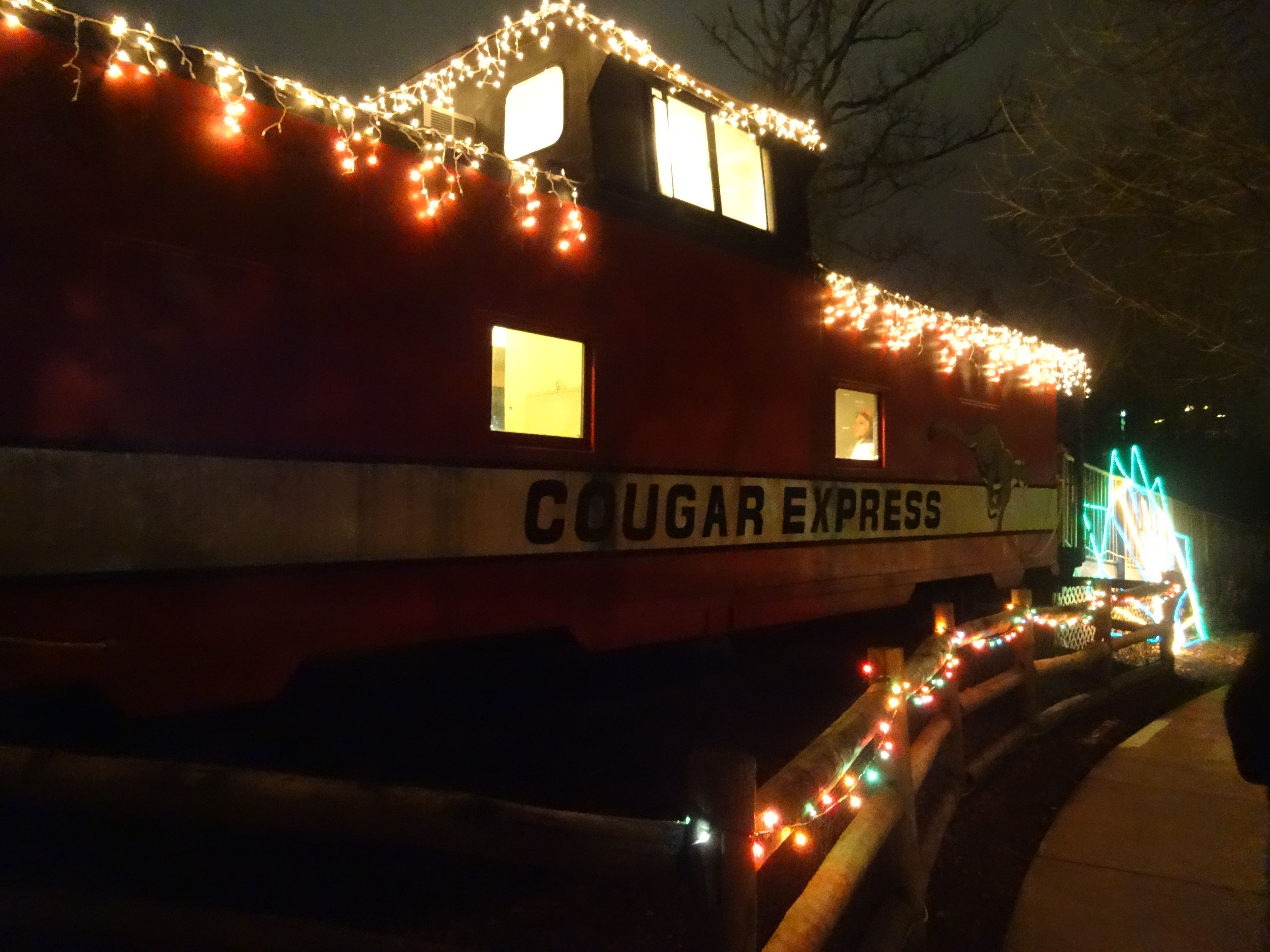 Holiday Lights At The Chattanooga Zoo Tn