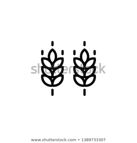 Vector Farm Wheat Ears Icon Template Line Whole Grain Symbol Illustration For Organic Eco Business Agricultur Gluten Free Logo Gluten Free Symbol Bakery Icon