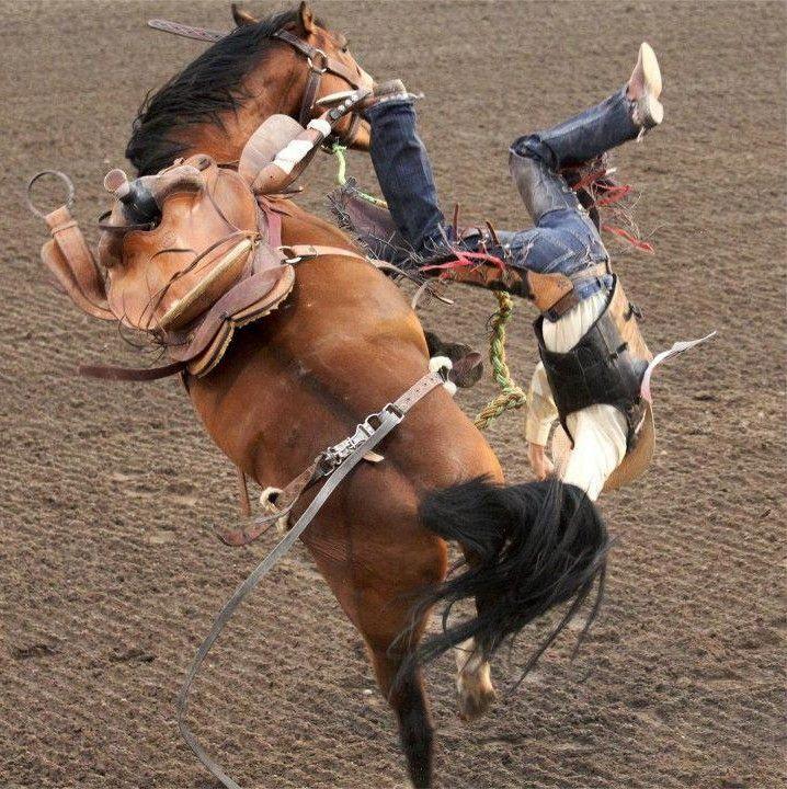Crazy Cowboys!