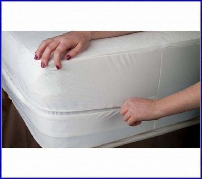 Mattress Cover For Bed Bugs Bed Bath And Beyond Mattress Ideas