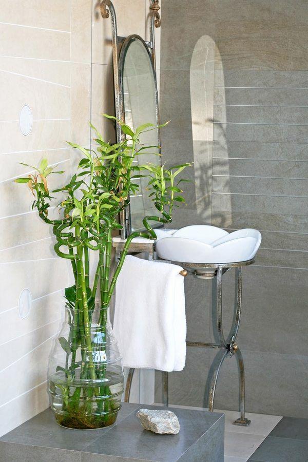 plants for bathrooms lucky bamboo bathroom decorating ideas ... on cool bathroom sink ideas, double vanity bathroom mirror ideas, spa bathroom garden tub, spa bathroom vanities ideas, spa bathroom trends, hgtv spa bathroom ideas, spa bathroom layout, spa bathroom mirrors, spa like bathroom ideas, shop modern rustic design ideas, spa feel in bathrooms, spalook bathroom ideas, tv design ideas, green bathroom ideas, spa bathroom stone brown, spa style bathroom design, conservatory design ideas, spa bathroom decor, earthy colors bedroom design ideas, spa bathroom lights,