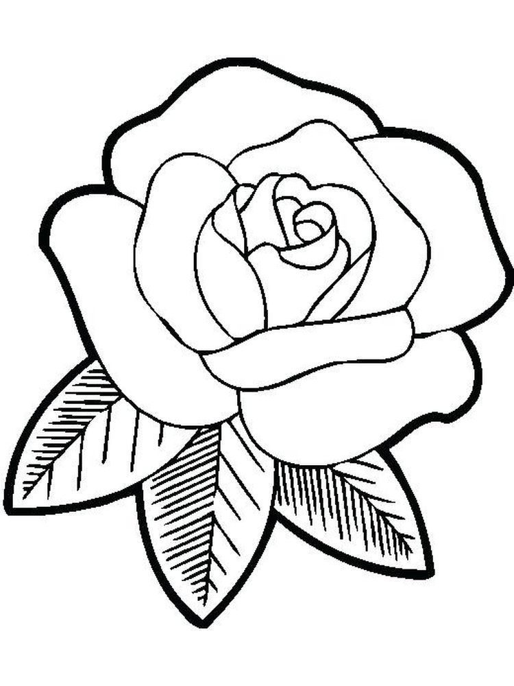 Spring Flowers Coloring Book Pages Below Is A Collection Of Beautiful Flower Coloring Page Which You C Easy Flower Drawings Rose Drawing Simple Flower Drawing