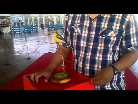 Alex, natural de Puerto Rico, su ave tallada se alzó con el 2º Premio Pieza Museo de Artesanía Iberoamericana. II Feria Internacional de Artesania.