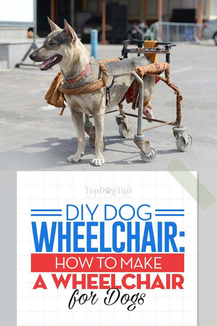 How to make a wheelchair for dogs by yourself dog