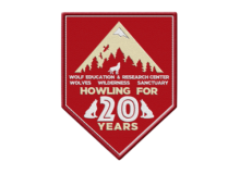 20 Year Commemorative Patch