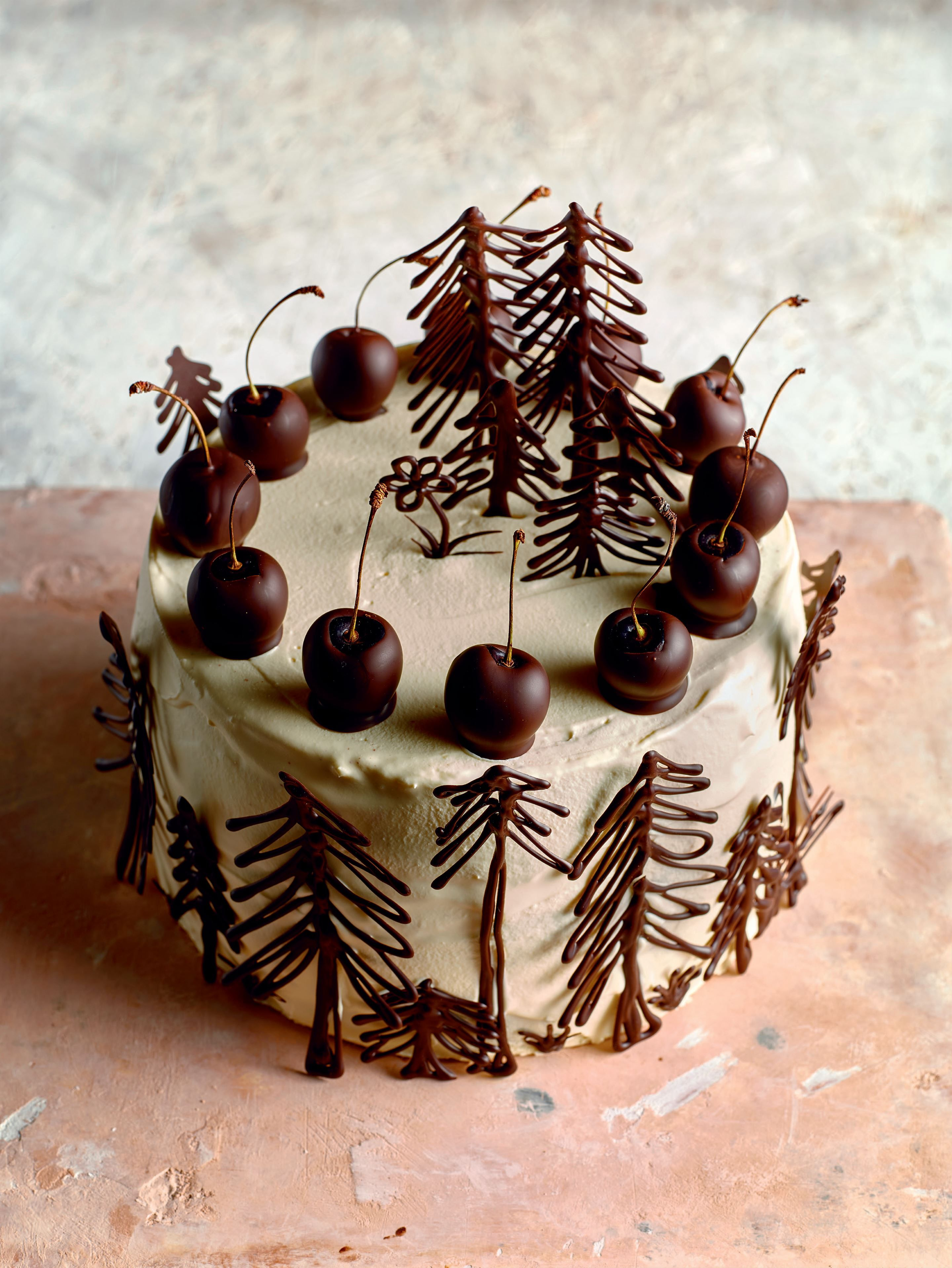 Black Forest Gateau Recipe From B I Y Bake It Yourself By Richard