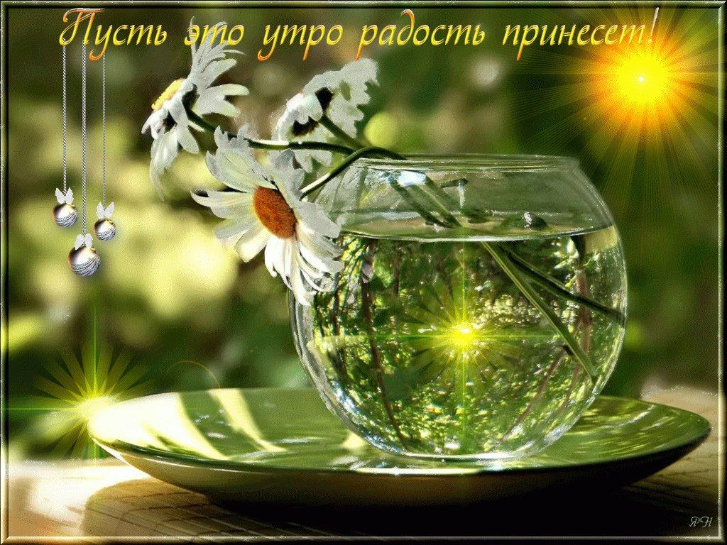 Dobroe Utro Kartinki Krasivye 13 Tys Izobrazhenij Najdeno V Yandeks