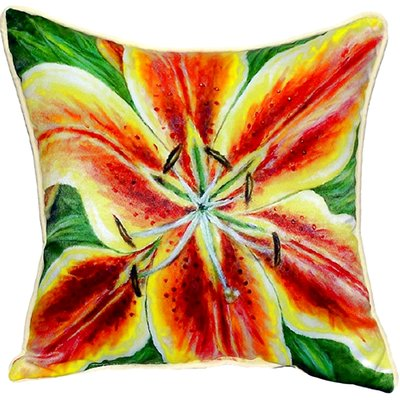 Wonderful Betsy Drake Interiors Lily Indoor/Outdoor Throw Pillow Size: Large |  Outdoor Throw Pillows, Indoor Outdoor And Products