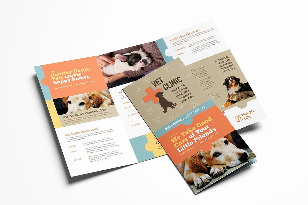 Word Trifold Brochure Template Beautiful Vet Clinic
