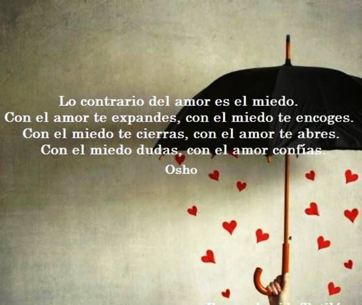 Lo Contrario Del Amor Es El Miedo Miedo Al Amor