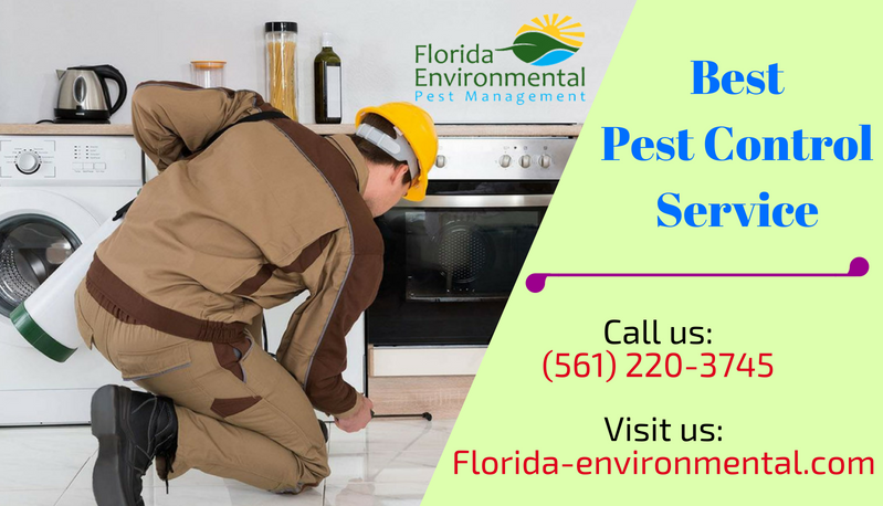 Pest Control Services Pest Management Pest Control Services Pest Control