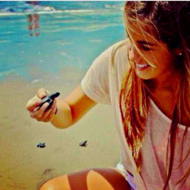 baby sea turtles <3