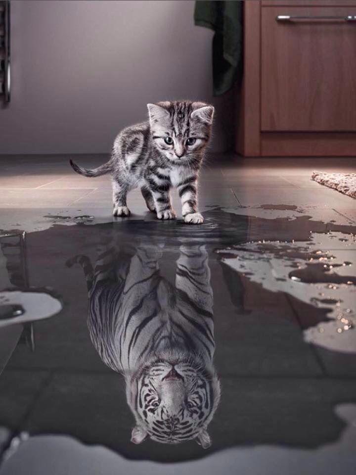 El problema es cuando es al contrario, mantemgamos la fr en nosotros mismos, ese es el secreto...