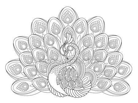 Elegante pavo real — Vector de stock | Ideas de tatuajes | Pinterest