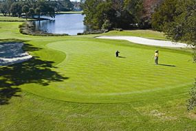 Sea Palms Golf Resort, St Simons Island, SC.    Will be going there in a couple weeks.  Can't wait.