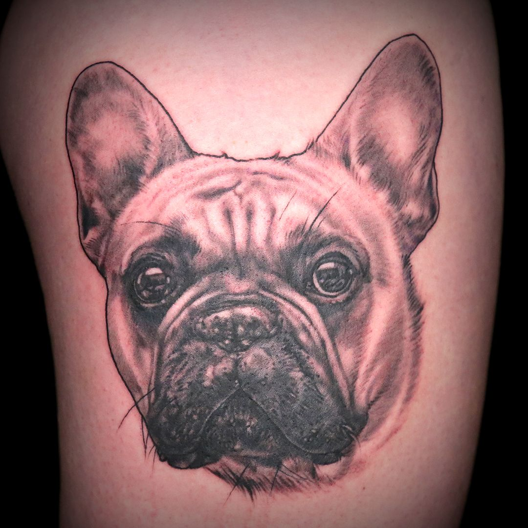 Boston Terrier Dog Tattoo by Alexis Kovacs Dog tattoos