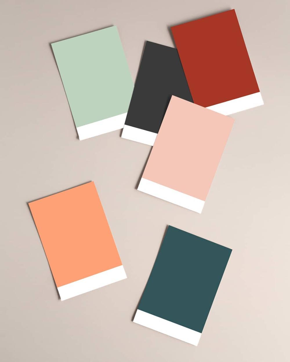 Elena Brand Web Design En Instagram Color Palette For Bouclette Co Mockup By Moyo Studio Color Palette Aesthetic Colors Color Inspiration